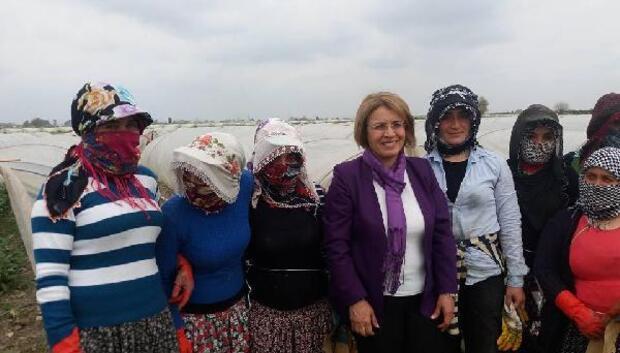CHP Kadın Kolları Genel Başkanı Köse, tarlada hayırı anlattı