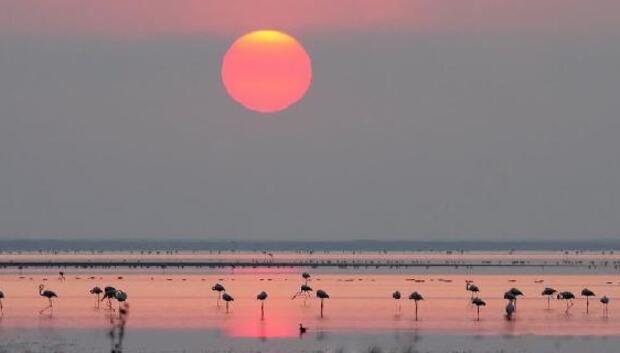Kuruyan Seyfe Gölü ile ilgili DSİden müjdeli haber