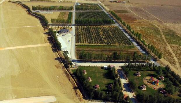 Tuzlukçu Fidanlığı istihdama ve üretime katkı sağlıyor