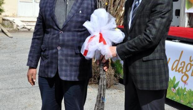 Bitlis'te 65 bin adet meyve fidanı dağıtıldı