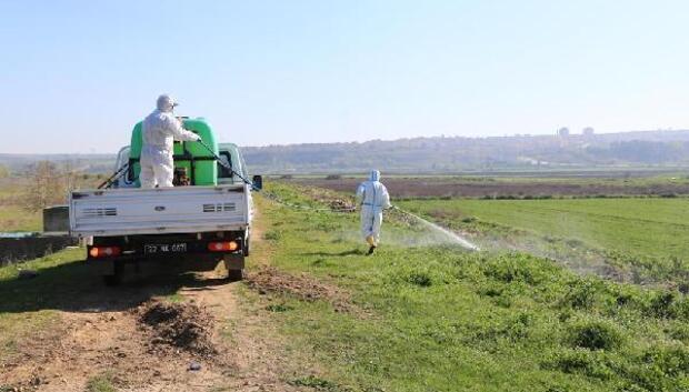 Edirne Belediyesi, su kanallarında ilaçlama çalışması yaptı