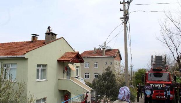Çatıya çıkıp evinin yıkımına engel oldu