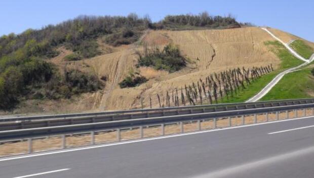 ek fotoğraflar//Yavuz Sultan Selim Köprüsü çevre yolu ağaçlarının bir bölümü kurudu