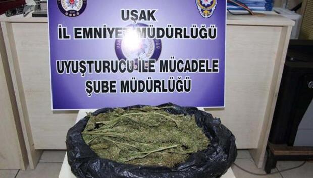 Yolcunun çantasından 830 gram esrar çıktı