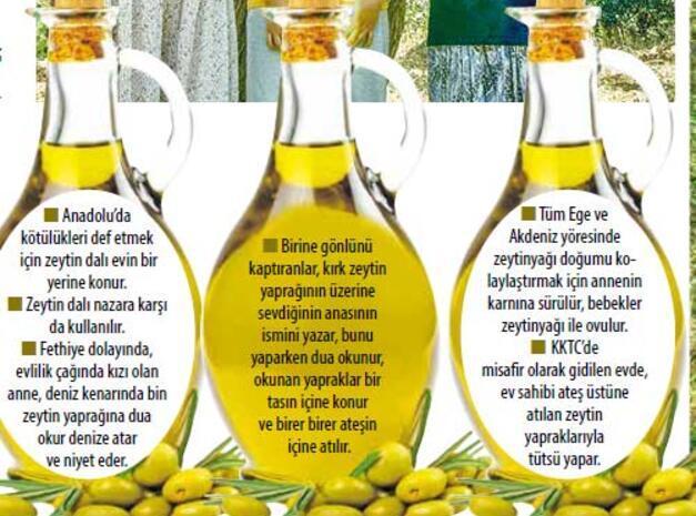 Zeytin gelinleri