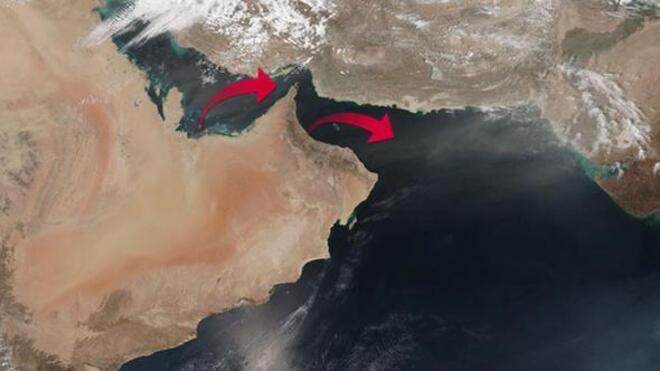 Katara 4 bin inek havadan taşınacak