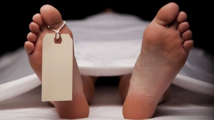 İsveç Liberal Parti'den şok açıklama: Ölü sevicilik ve ensest ilişki yasal olmalı