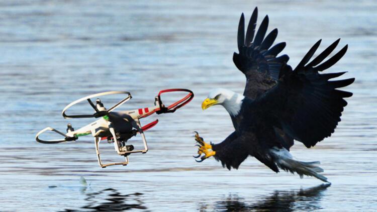 Kartal Drone A Karsi Sondakika Ekonomi Haberleri