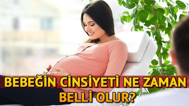 Bebeğin Cinsiyeti Ne Zaman Belli Olur Sağlık Haberleri