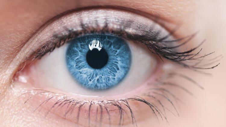 Mavi Gözlü Insanlar Hakkında Bilmeniz Gereken 6 Bilgi Hayat Haberleri