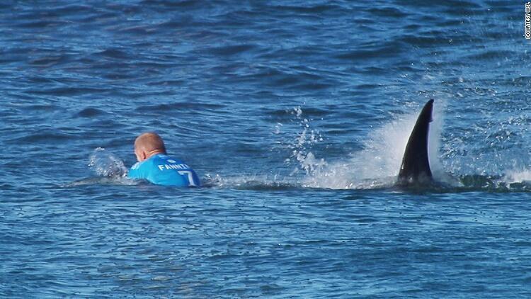 avustralya da köpek balığı saldırısı yarışmayı erteletti son