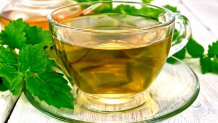 Melisa Çayı ile ilgili görsel sonucu