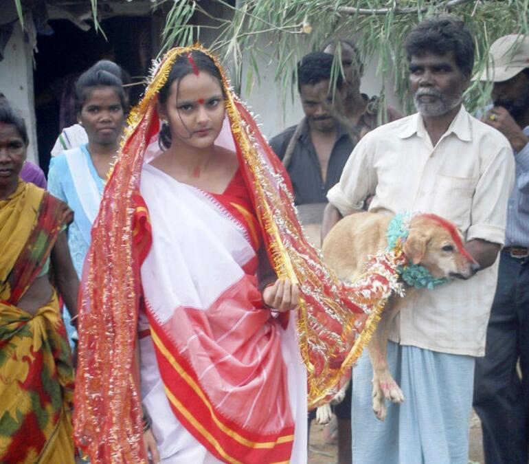 Hindistanda Ilginç Bir Gelenek Köpekle Evlenme Festivali Tuğçe