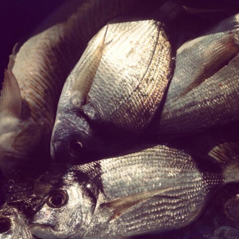 Balığı sağlıklı tüketmenin püf noktaları