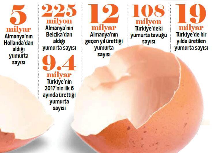Yumurtanız nasıl olsun