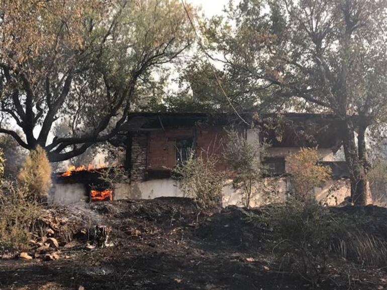 Orman yangını... Göz gözü görmüyor, evler boşaltılıyor... Yaralılar var...