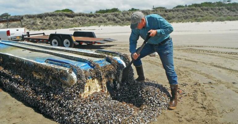 Tsunami felaketinin arından dünyanın en uzun deniz göçü...