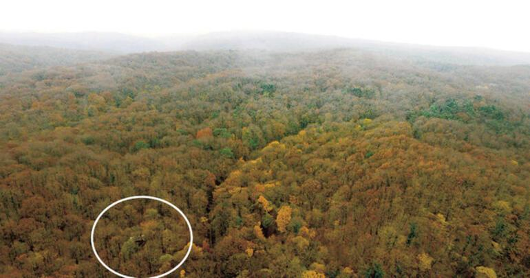 İstanbul polisini şoke eden baskın Belgrad Ormanındaki çadırdan çıktılar
