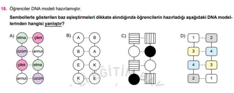 İşte liseye giriş sınavı örnek soruları