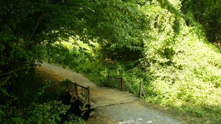 İstanbulun arka bahçesi: Polenezköy