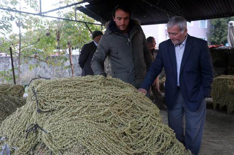Yaş fiyatı 20 lira olan bamya markette 175 lira