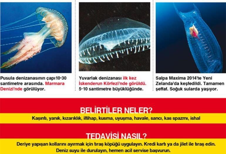 Denizlerimizi saran tehdit: Biyoistila 30
