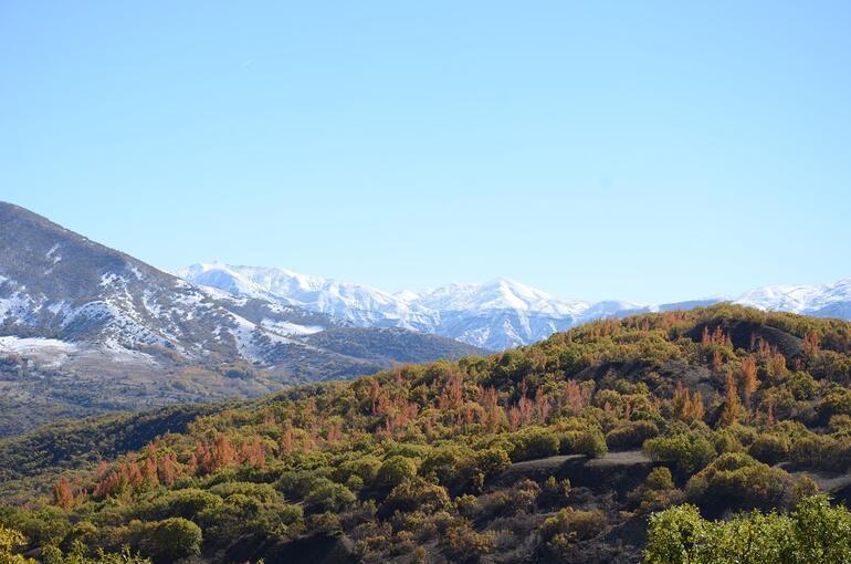 O sarp dağlara bakarken  tek istediğim, türkü dinlemek oldu