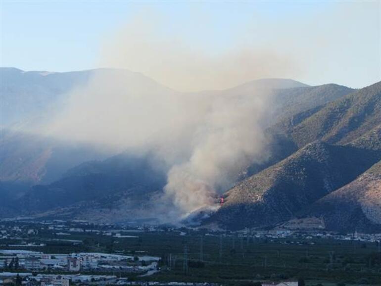 Antalyada korkutan yangın... Müdahale ediliyor