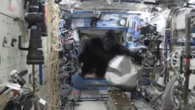 Astronotların 'maymun' şakası