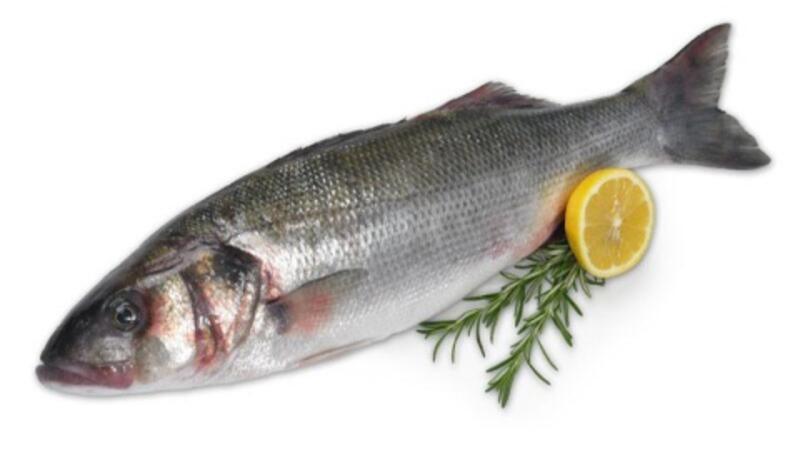 Bu balık başka balık