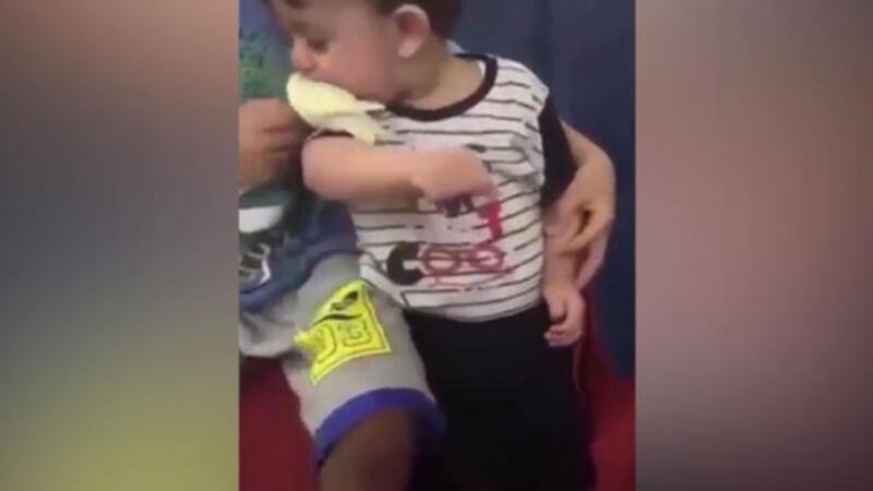 Kuşu sevmek isterken yiyen çocuk
