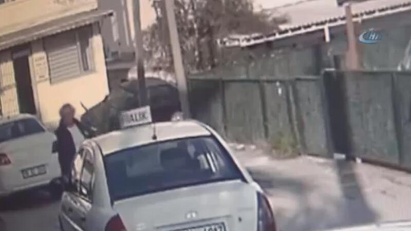 Bodrum'da göz göre göre köpekleri zehirledi