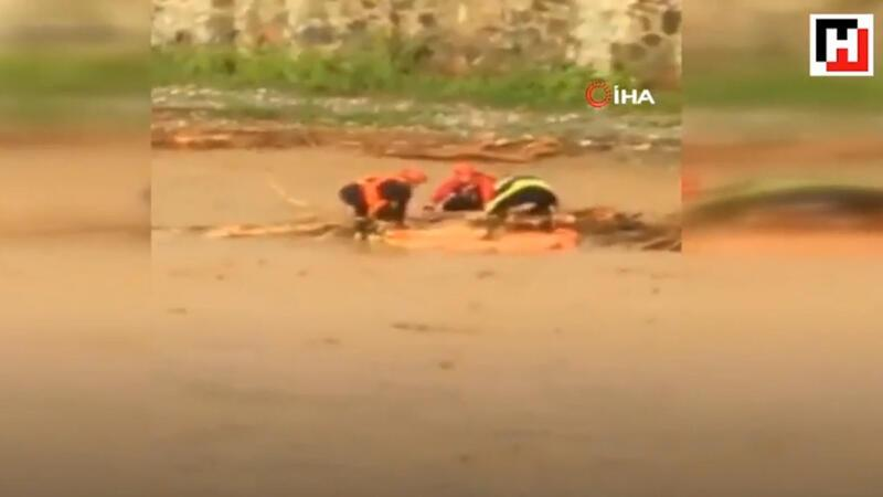 Flood kills 4 in Black Sea region