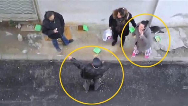 Sokakta kedi besleme kavgasında şikayetçi oldu