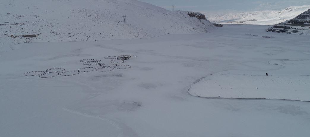 Zernek Barajı'nın yüzeyi buz tuttu