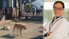 Nöroloji profesörü köpek bıçakladı