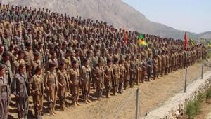 'Bu iki Alman PKK üyesi'