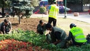 İBB: Taksim'e 20 ağaç, 152 bin çiçek