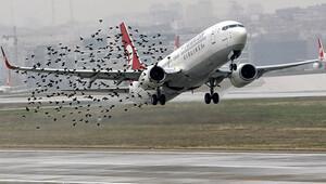 Pilotların 'göç' korkusu