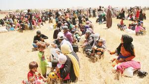 15 bin Türkmen alarmı