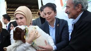 Emine Erdoğan, Türkiye'nin en büyük çadır kentini açtı