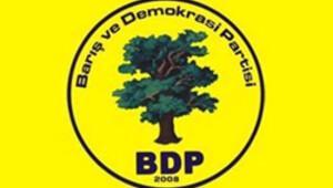 BDP'den Barış Günü mitingi
