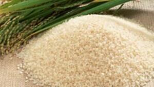 GDO'lu pirinç soruşturmasında 6 kişi serbest