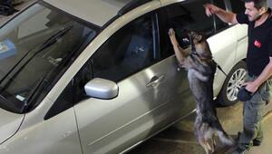 Kapıkule'de Almanya plakalı araçta 21 kg eroin yakalandı