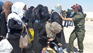 YPG Tel Abyad sınır kapısını açtı, dönüşler başladı