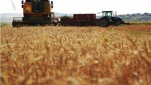 Son 13 yılda 2.6 milyon hektarlık tarım arazisi üretim dışı kaldı