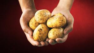 Ver tohumu al patatesi