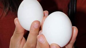 Yumurta satışında yeni dönem: Son tarih 20 Aralık