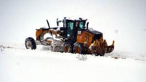 Kar nedeniyle Doğu Anadolu Bölgesi'nde 1065 köy yolu kapandı
