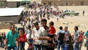 Gelen göçmenlerden sadece yüzde 3'ü kalifiye işçi